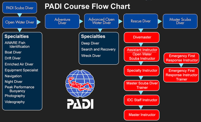 Flowchart showing all the PADI courses offered by Oceandivers