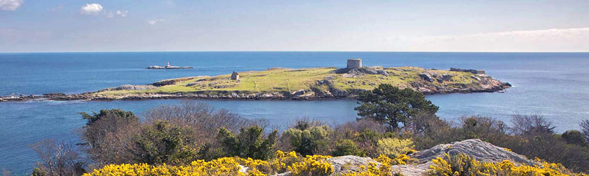 View of Dalkey Island and Muglins Rock